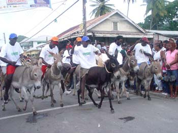 Donkey Races during Carnival